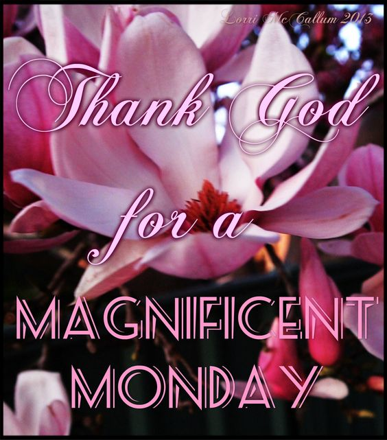 Magnificent Monday Thanks