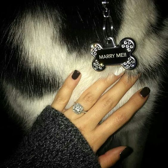 Creative proposal for a crazy dog lady! OMG!!!!!
