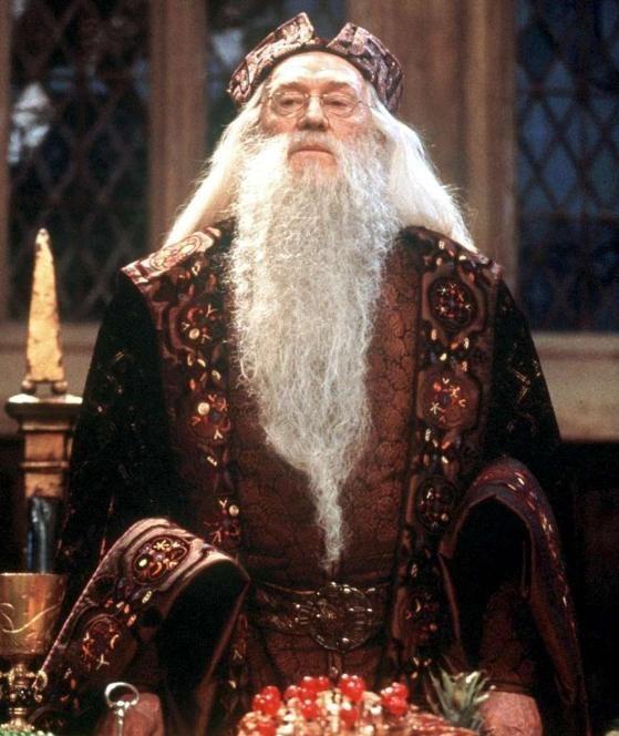 Harry Potter Schauspieler David Ryall Tot Diese Darsteller Starben Im Echten Leben Richard Harris Getting A Puppy Irish Actors