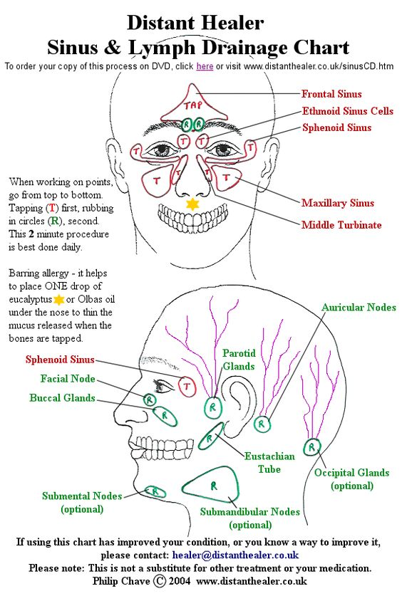 The Distant Healer Sinus and Lymph Drainage Chart. Click this image to order your copy