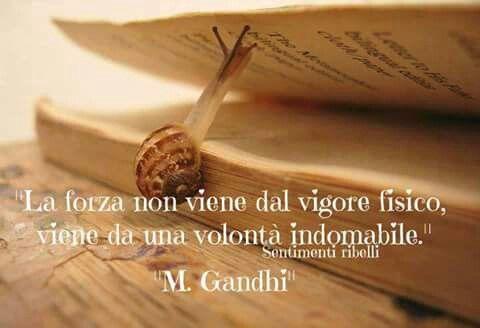 Gandhi Citazioni: