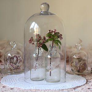 Glass Dome Bell Jar Cloche