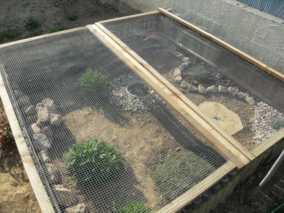 Nouvel enclos pour ma hermann jardin pinterest for Acheter de la terre pour jardin