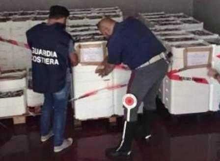 Ingente sequestro di pesce e frutti di mare donata una parte allo Zoo di Napoli