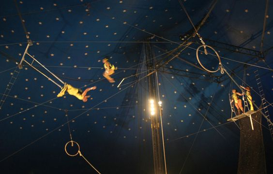 Circus Trapeze | circus, trapeze, released: