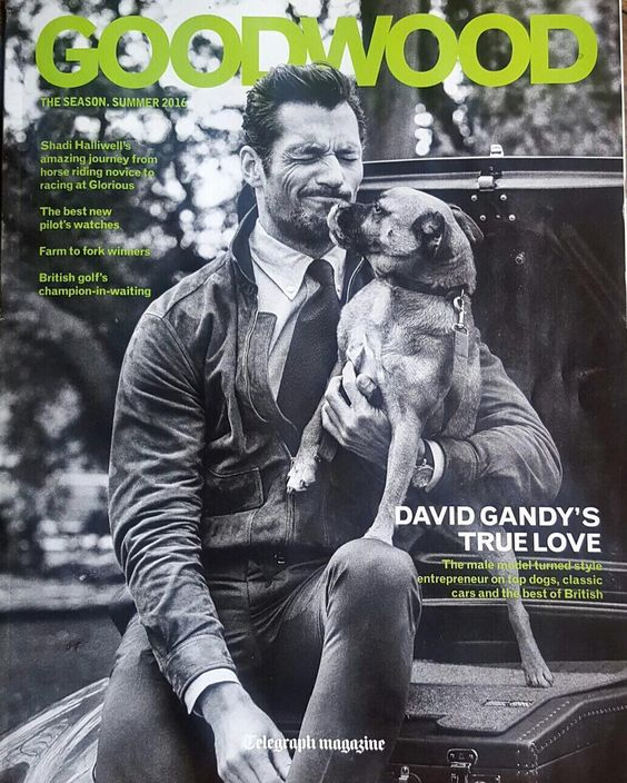 Cover of the The @Telegraph #Goodwood supplement shot by #TomoBrejc with my four-legged friend, Hero. He's a friendly #BDCH dog who is looking for a forever family. @BatterseaDogsAndCatsHome