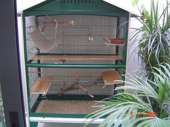 Como hacer una jaula para aves imagui casas de conejos for Como aser una casa