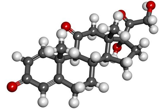 Testosterone Therapy And Drug Interactions - http://healthgains.com/blog/testosterone-therapy-2/testosterone-therapy-drug-interactions/