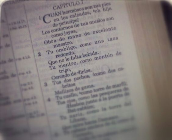 Cantares, Cap. 7, ver. 1