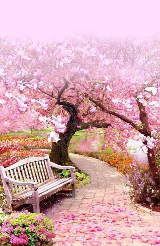 Les jardins et les parcs - Page 2 88736f797109631752ea9e9a3c5961a0