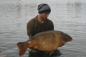 Picture of a Common Carp. Pictures & Images of carp and other scenery shots at the lake side; courtesy of Best bait for carp fishing.  http://bestbaitforcarpfishing.com/carp-gallery