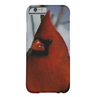 Cardinal, Barely There iPhone 6 Case. Barely There iPhone 6 Case