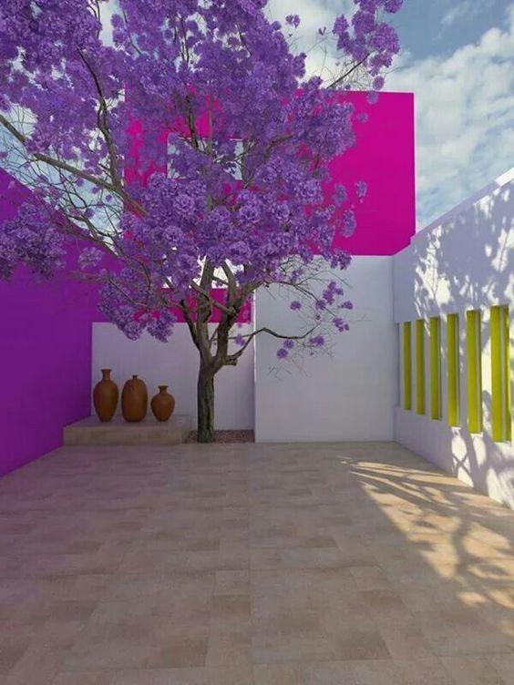 el contraste del color, la sensacion que transmite el lugar, la armonia entre la naturaleza y la edificacion.    Snake Ranch | fancyadance: Luis Barragan, Jacaranda and Mexican...