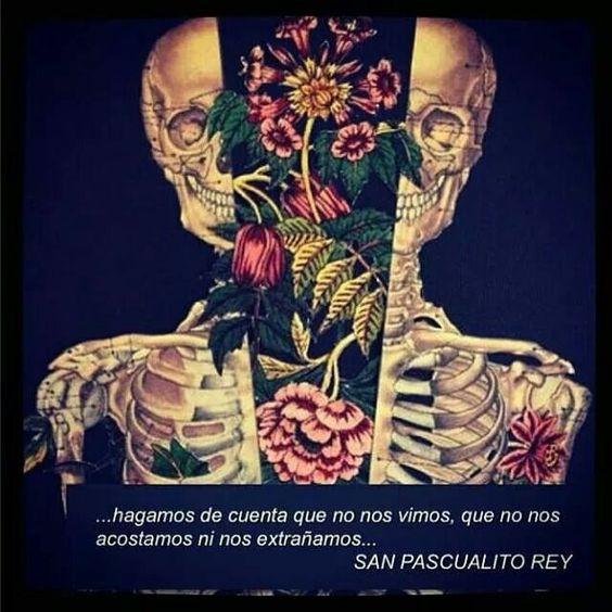 ...hagamos de cuenta que no nos vimos, que no nos acostamos ni nos extrañamos... San Pascualito Rey