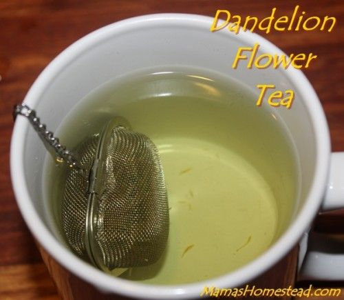 How To Make Dandelion Tea With Images Dandelion Tea Dandelion Recipes Tea Recipes