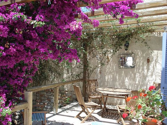 Gardens lush and colors on pinterest - Mediterranean garden plants colors and scents ...