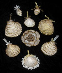 Seashell Crafts | Seashell crafts.... - Homesteading Today