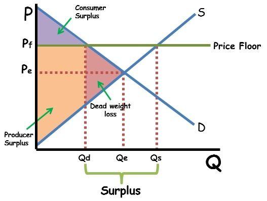 Price Floor Graph Shaded Economics Notes Flooring High School Teacher