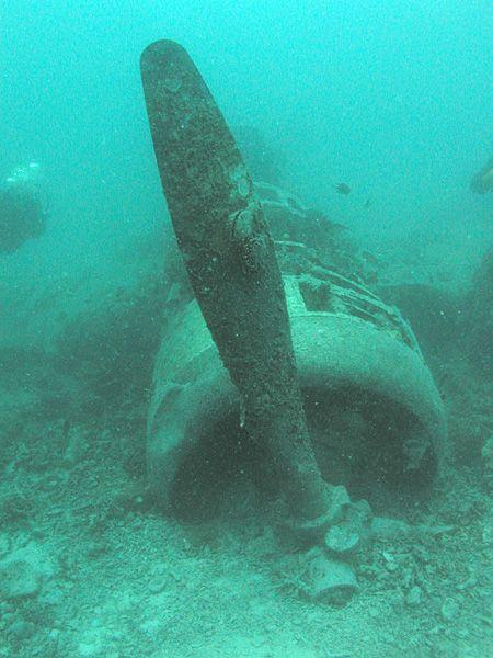 武士の島 — Aichi E13 floatplane wreck, sunk in Kavieng...