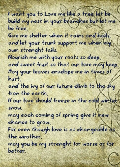 nurturing a new relationship poem