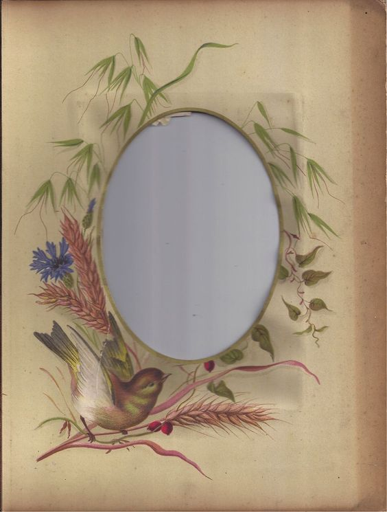 Photograph Mat from Victorian Photo Album, Bird, Wheat, Cornflower