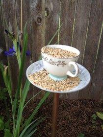 Cute bird feeder