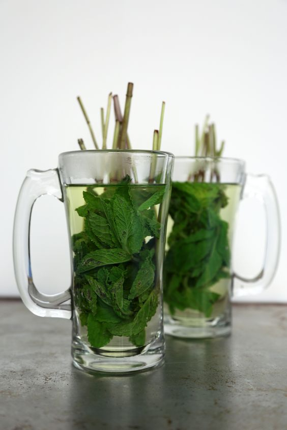 Mint Tea Tastes So Fresh and So Green  I really love it this way. As a matter of fact,I've tasted this in a middle-eastern snack house,here in São Paulo (without these showing-out stems).DELICIOUS!!!: