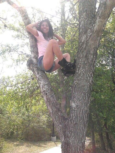 Jo Texas trees