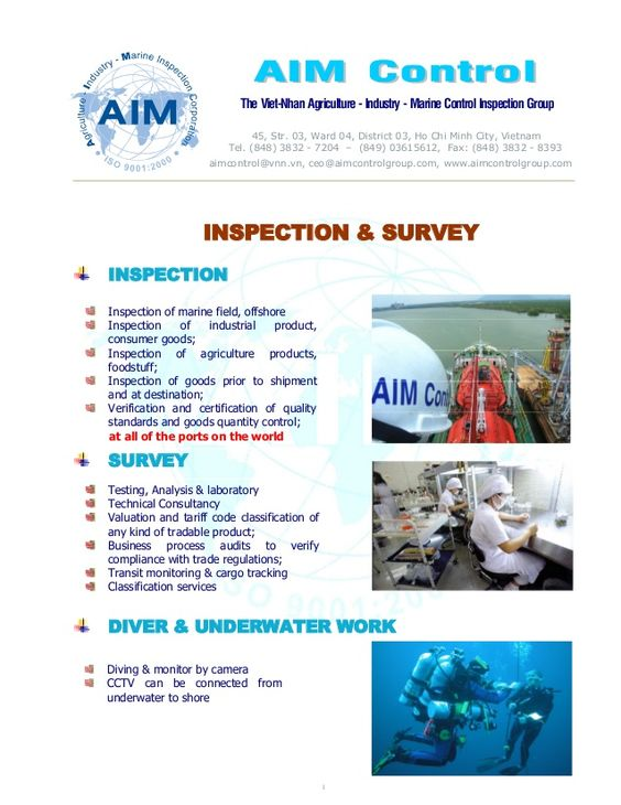 Inspection Survey Testing Certification services of AIM Control - survey report sample