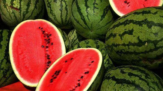 fruta melancia - Pesquisa Google