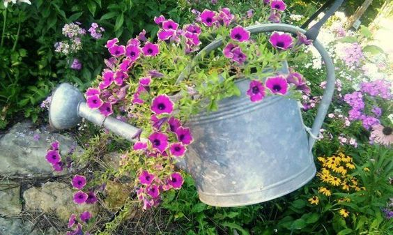 Vintage watering cans in the garden | Flea Market Gardening
