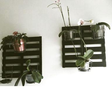 Des palettes accroch es au mur pour y suspendre tous nos pots dccv jardinsuspendu green - Cache pot a accrocher au mur ...