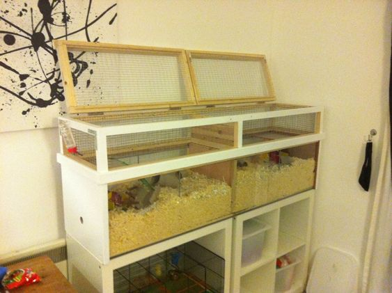 My new home made tank its done the gerbil forum for Ikea hamster cage