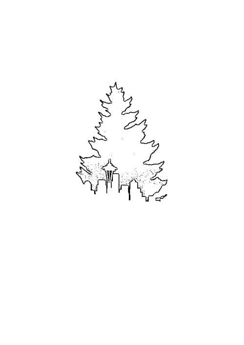 evergreen tattoo - Google Search