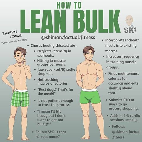 Bulk Up With Lean Muscle Quickly Weight Training Workouts Bodybuilding Workouts Gym Workout Tips