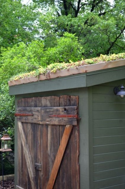 Green roof on shed from LiveRoof