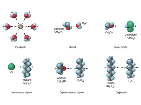 intermolecular force example diagram - Google Search