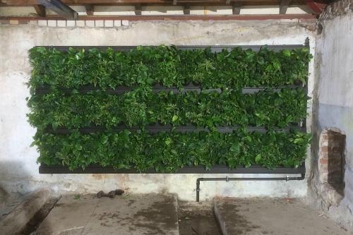 Een duurzame plantenwand eigen huis en tuin idee n for Eigenhuis en tuin gemist