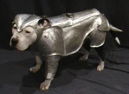 I guess this is what animals would wear if we went to battle a few hundred years ago