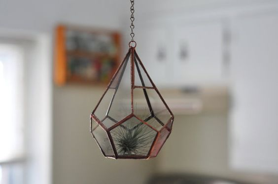 Hanging Teardrop Glass Terrarium -- perfect for air plant terrarium or small succulent -- terrarium supplies -- eco friendly
