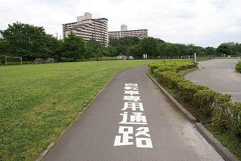 自転車専用道路表示
