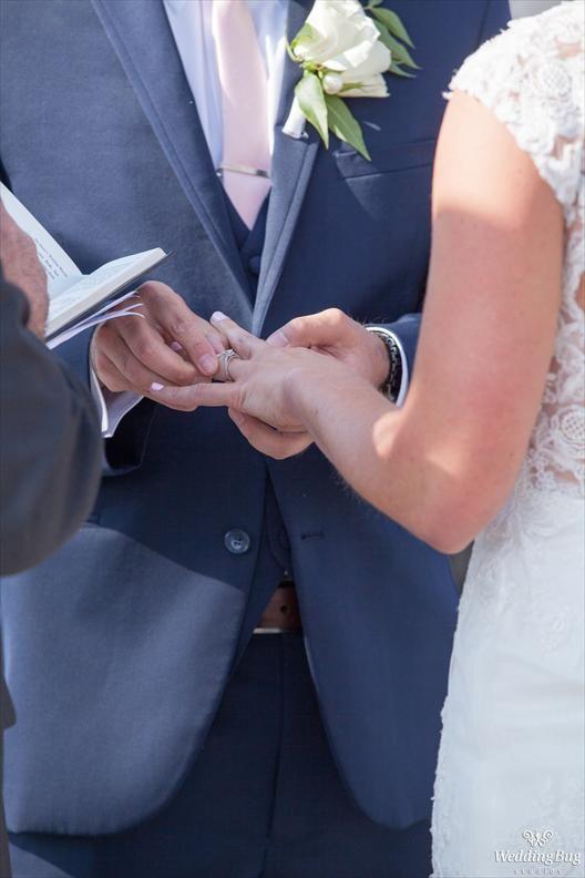 Gallery Wedding Bug Affordable Wedding Photography Wedding Wedding Photography