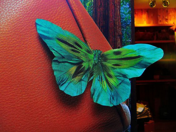 butterfly on brown leather by rosanne maccormick-keen, via Flickr