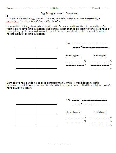 Big Bang Theory Genetics Punnett Squares | Worksheets, Bangs and ...
