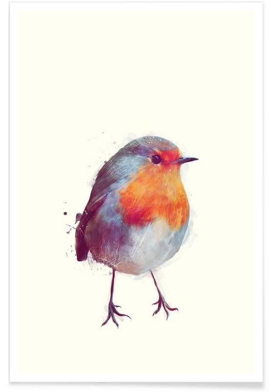 Winter Robin als Premium Poster von Amy Hamilton | JUNIQE