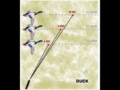 Here's some cool footage that captures a person's lead time on ducks at different distances... It's cool to see the corrections they make after a miss. Check it out!