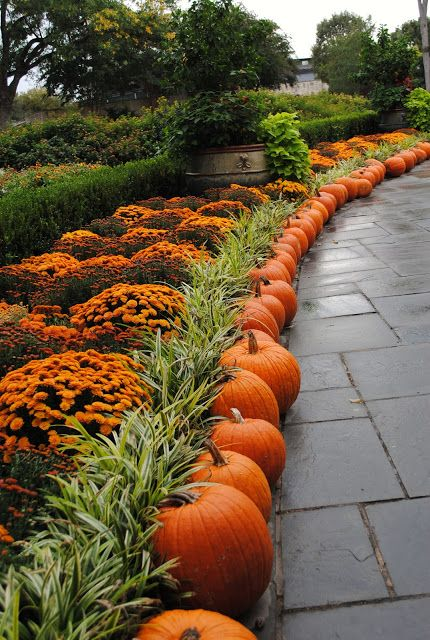 WOW!!! What beautiful landscaping and decorating. Paint the pumpkins in rich, metallic colors for Christmas to enjoy the motif through the holidays.: