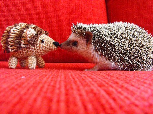 Some things gone horribly wrong with this hedgey,......... Hey, why won't you answer?: