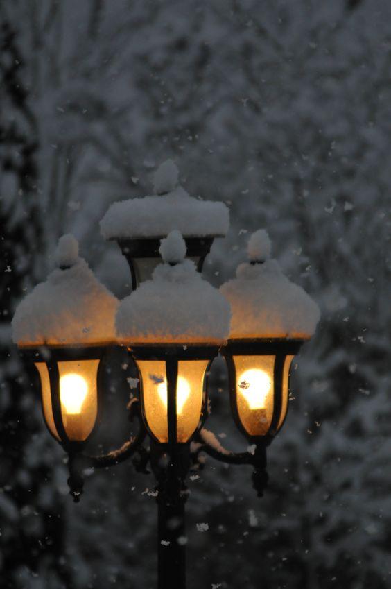 winter snow 2012