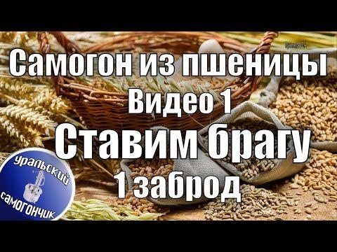 рецепт браги без дрожжей